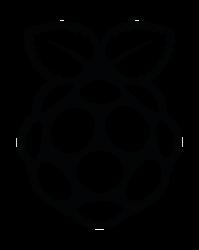 RASPBERRY PI HOLOGRAM