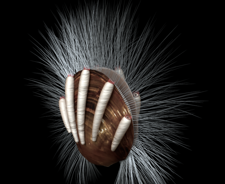Artist's depiction of what this brachiopod—and its parasites—would have looked like.
