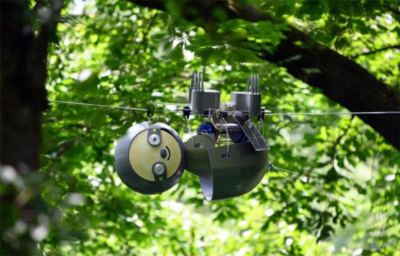 slothbot.jpg