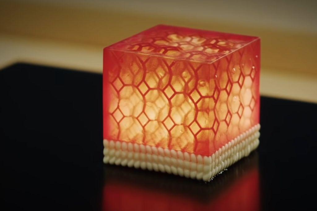sushi-singularity-3.jpg