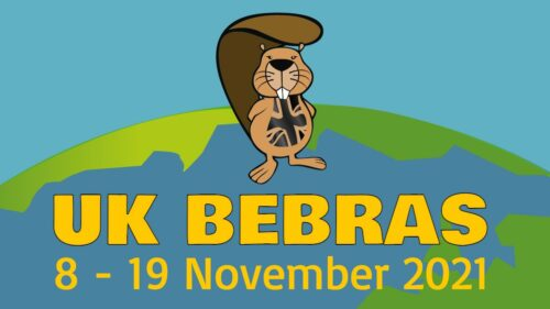 The UK Bebras Challenge 2021 runs from 8 to 19 November.